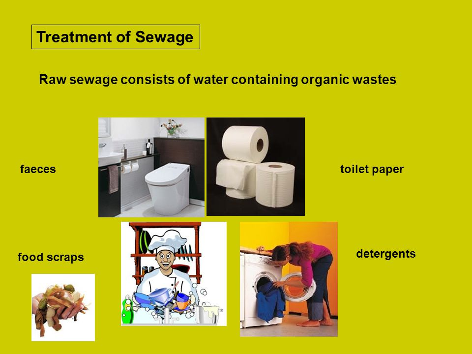 Treatment of Sewage Raw sewage consists of water containing organic wastes faecestoilet paper food scraps detergents