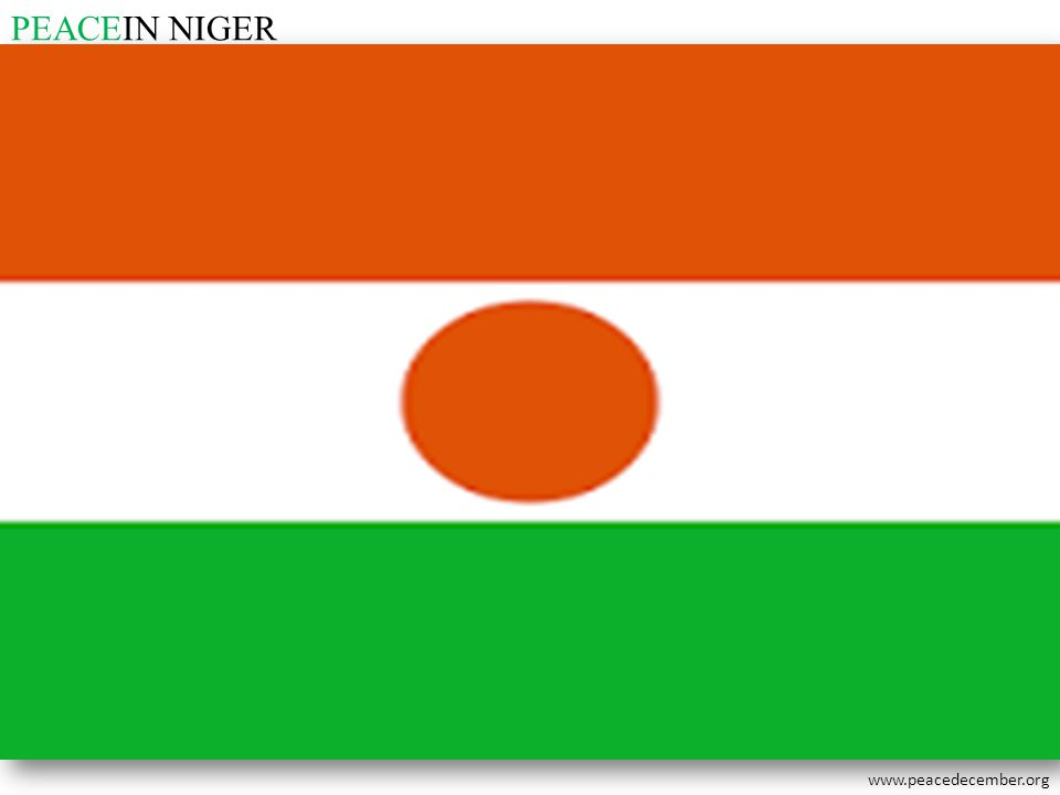 PEACEIN NIGER