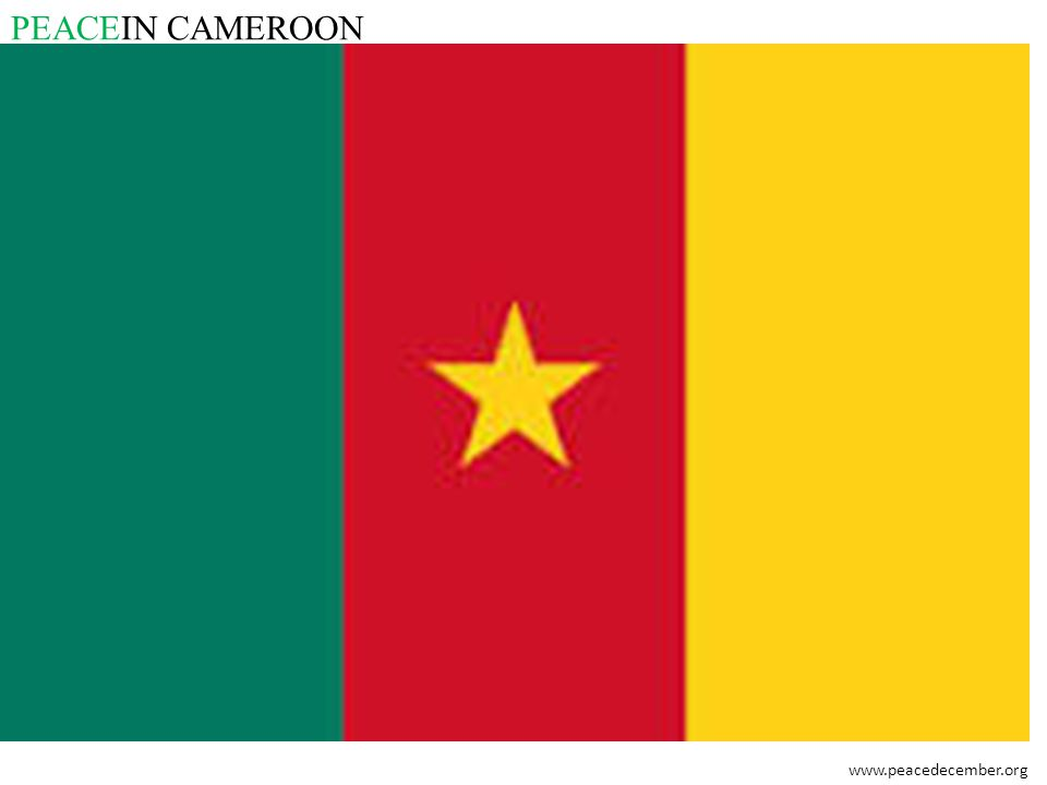 PEACEIN CAMEROON