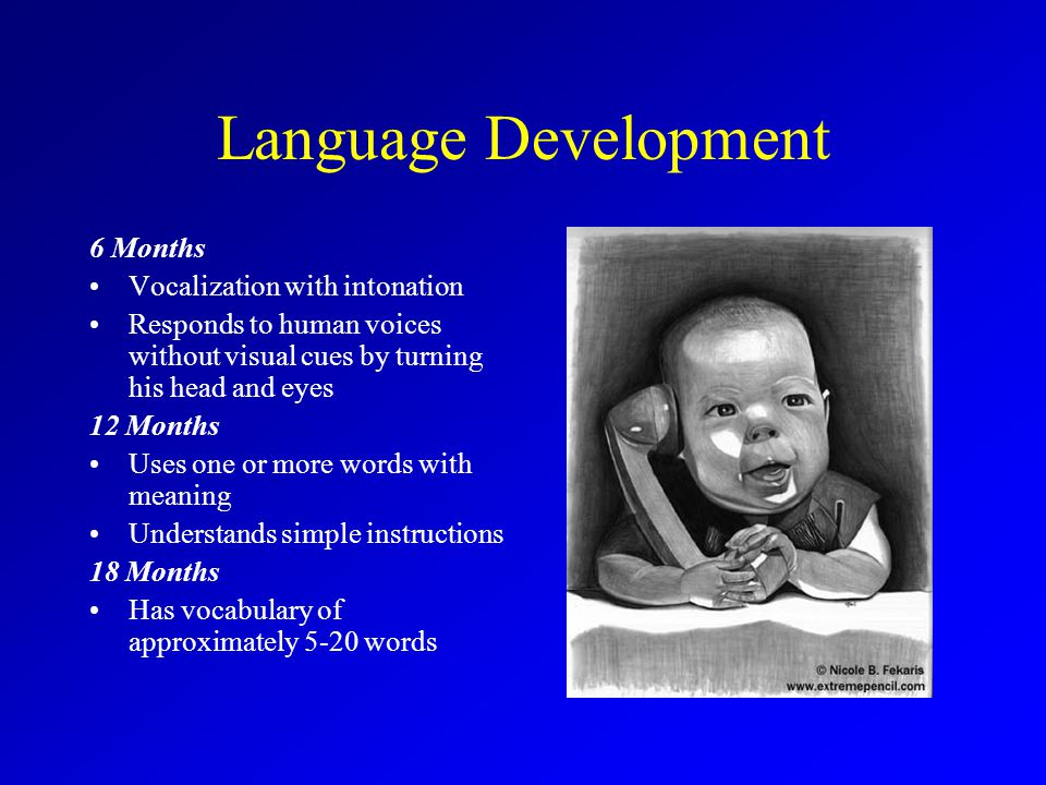 Language Development 6 Months Vocalization with intonation Responds to human voices without visual cues by turning his head and eyes 12 Months Uses one or more words with meaning Understands simple instructions 18 Months Has vocabulary of approximately 5-20 words