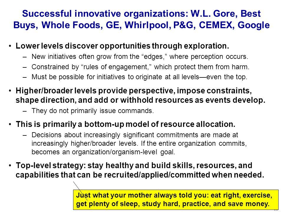 58 Successful innovative organizations: W.L.
