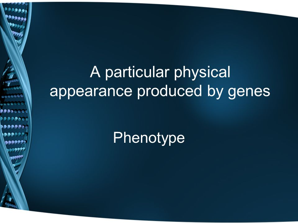 A particular physical appearance produced by genes Phenotype