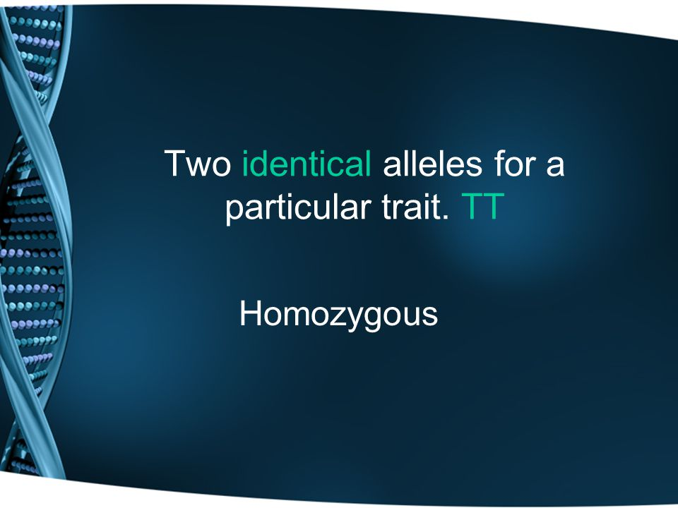 Two identical alleles for a particular trait. TT Homozygous