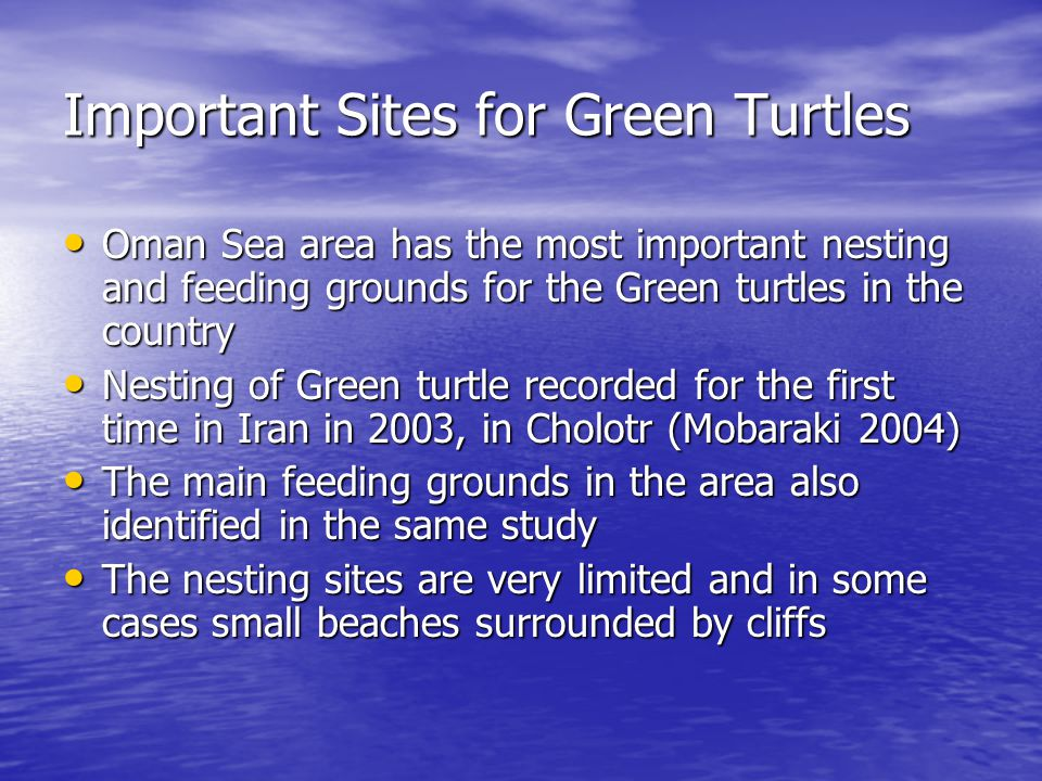 Important Sites for Green Turtles Oman Sea area has the most important nesting and feeding grounds for the Green turtles in the country Oman Sea area has the most important nesting and feeding grounds for the Green turtles in the country Nesting of Green turtle recorded for the first time in Iran in 2003, in Cholotr (Mobaraki 2004) Nesting of Green turtle recorded for the first time in Iran in 2003, in Cholotr (Mobaraki 2004) The main feeding grounds in the area also identified in the same study The main feeding grounds in the area also identified in the same study The nesting sites are very limited and in some cases small beaches surrounded by cliffs The nesting sites are very limited and in some cases small beaches surrounded by cliffs