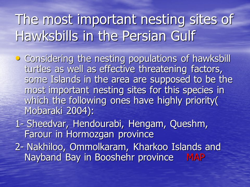 The most important nesting sites of Hawksbills in the Persian Gulf Considering the nesting populations of hawksbill turtles as well as effective threatening factors, some Islands in the area are supposed to be the most important nesting sites for this species in which the following ones have highly priority( Mobaraki 2004): Considering the nesting populations of hawksbill turtles as well as effective threatening factors, some Islands in the area are supposed to be the most important nesting sites for this species in which the following ones have highly priority( Mobaraki 2004): 1- Sheedvar, Hendourabi, Hengam, Queshm, Farour in Hormozgan province 2- Nakhiloo, Ommolkaram, Kharkoo Islands and Nayband Bay in Booshehr province MAP