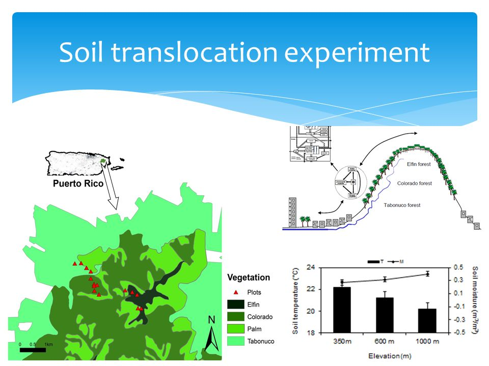 Soil translocation experiment