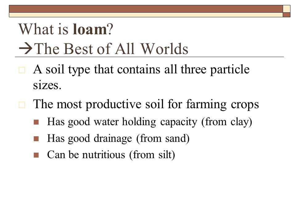 What is loam.  The Best of All Worlds  A soil type that contains all three particle sizes.