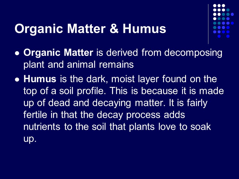 Organic Matter & Humus Organic Matter is derived from decomposing plant and animal remains Humus is the dark, moist layer found on the top of a soil profile.