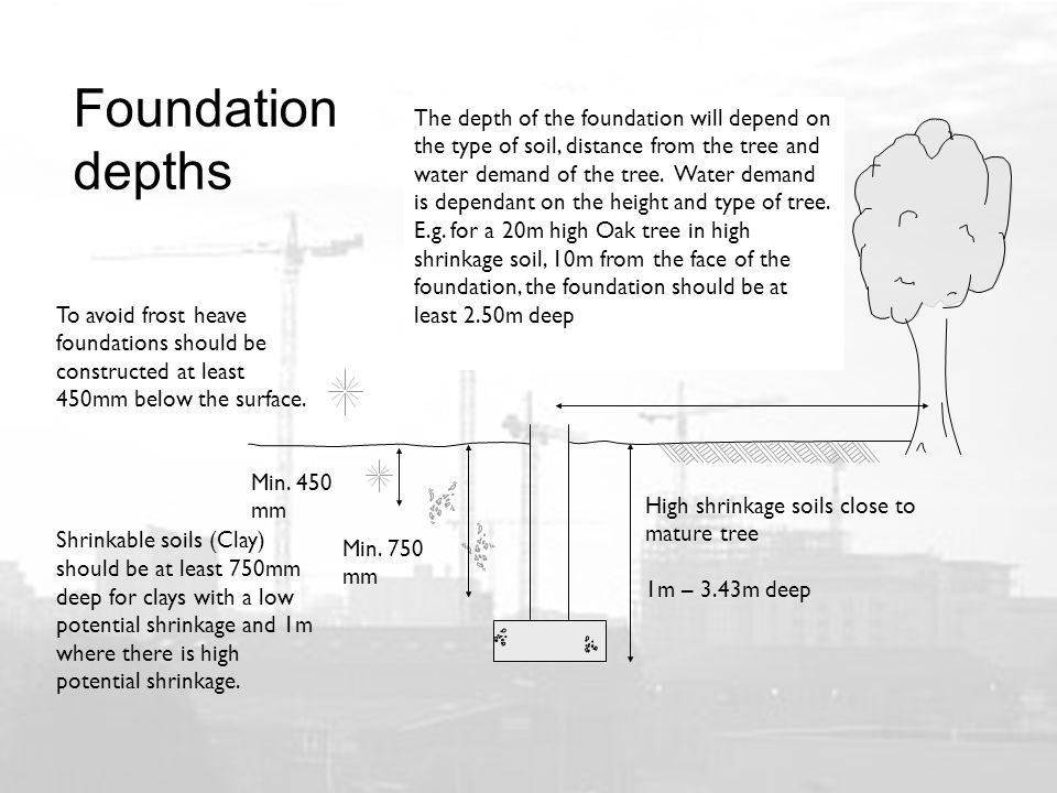 Foundation depths The depth of the foundation will depend on the type of soil, distance from the tree and water demand of the tree.