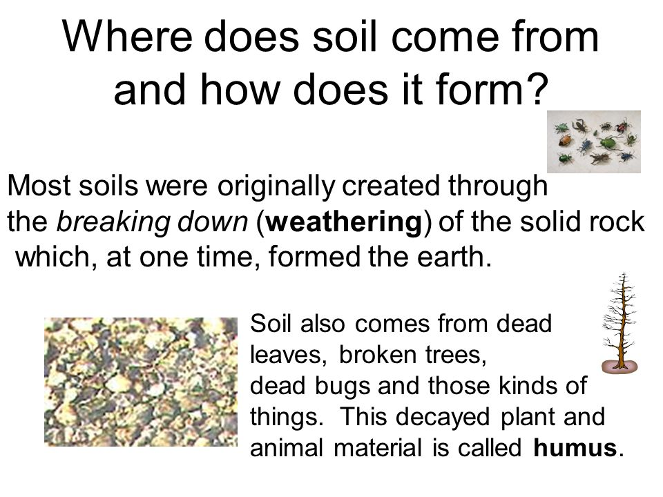 Properties of Soil. Where does soil come from and how does it form ...