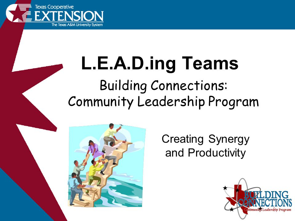 L.E.A.D.ing Teams Creating Synergy and Productivity Building Connections: Community Leadership Program