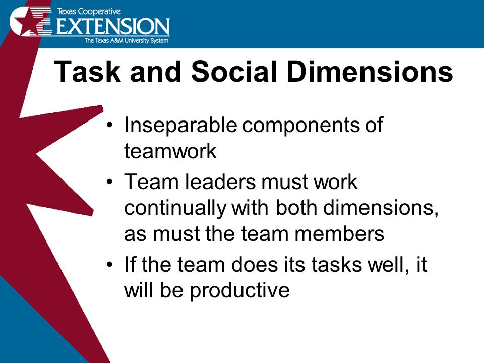 Inseparable components of teamwork Team leaders must work continually with both dimensions, as must the team members If the team does its tasks well,