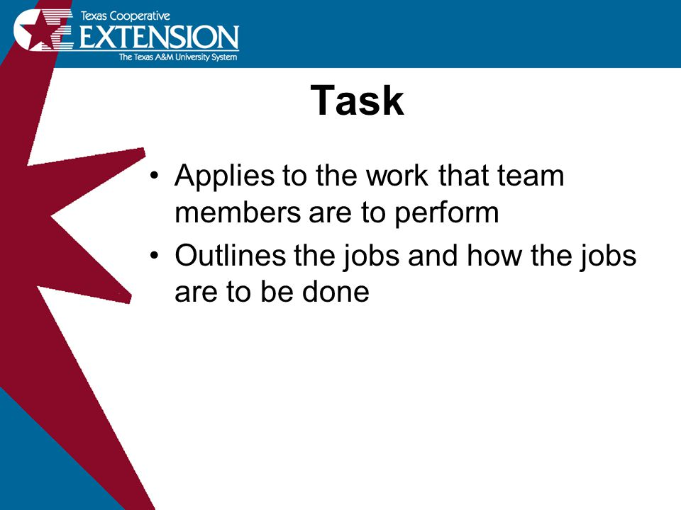 Applies to the work that team members are to perform Outlines the jobs and how the jobs are to be done Task