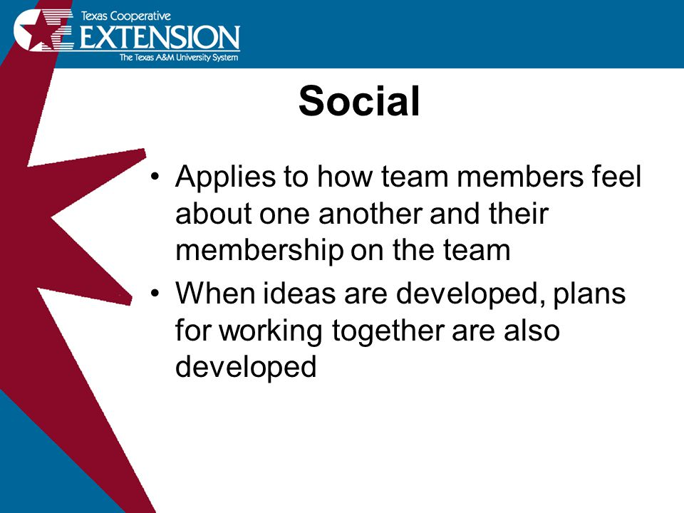 Applies to how team members feel about one another and their membership on the team When ideas are developed, plans for working together are also deve
