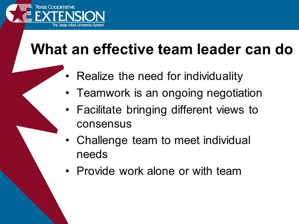 Realize the need for individuality Teamwork is an ongoing negotiation Facilitate bringing different views to consensus Challenge team to meet individu