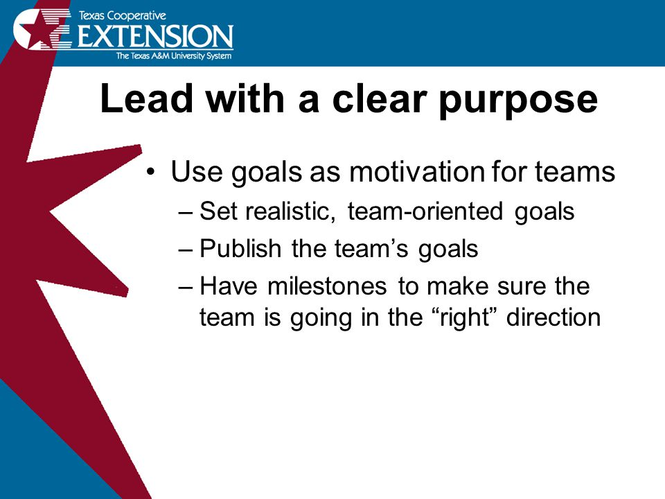 Use goals as motivation for teams –Set realistic, team-oriented goals –Publish the team's goals –Have milestones to make sure the team is going in the
