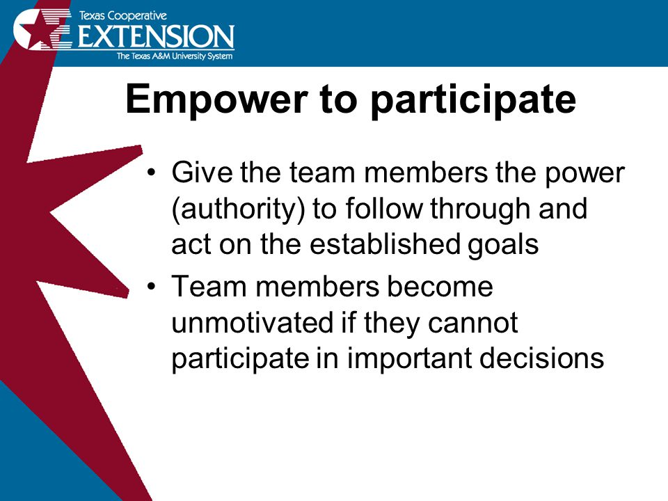 Give the team members the power (authority) to follow through and act on the established goals Team members become unmotivated if they cannot particip