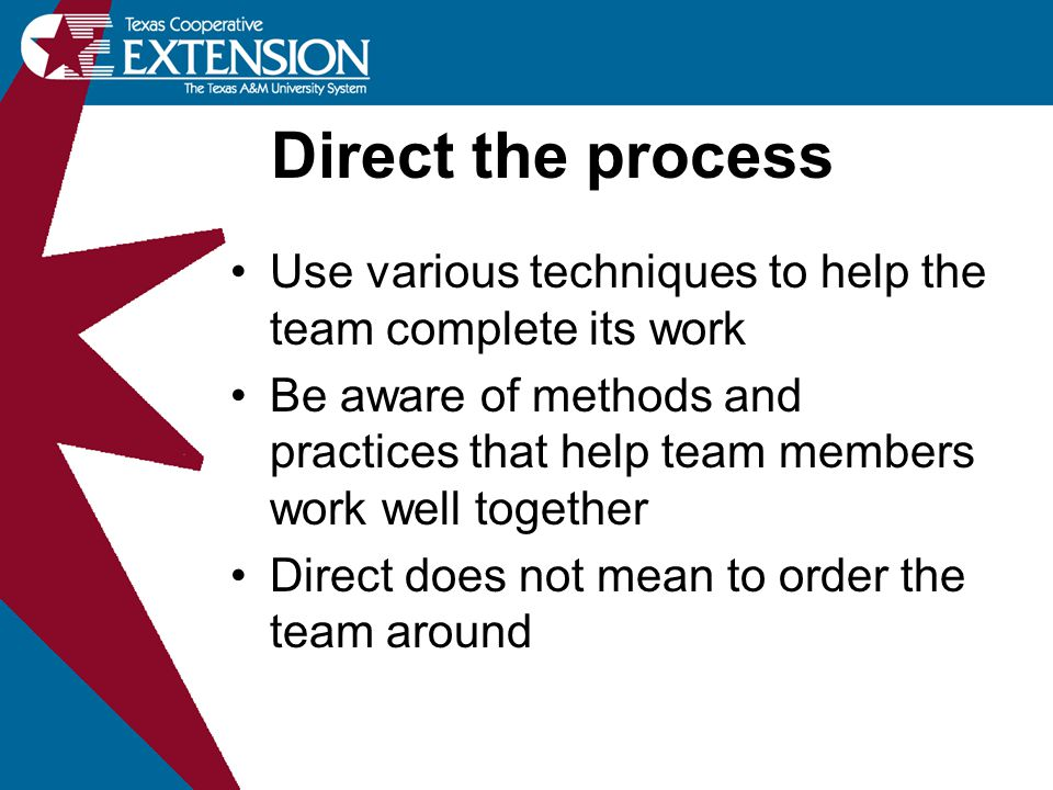 Use various techniques to help the team complete its work Be aware of methods and practices that help team members work well together Direct does not