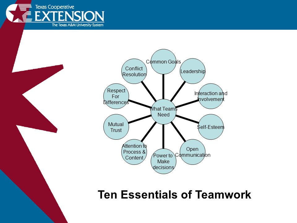 What Teams Need Common GoalsLeadership Interaction and Involvement Self-Esteem Open Communication Power to Make decisions Attention to Process & Conte