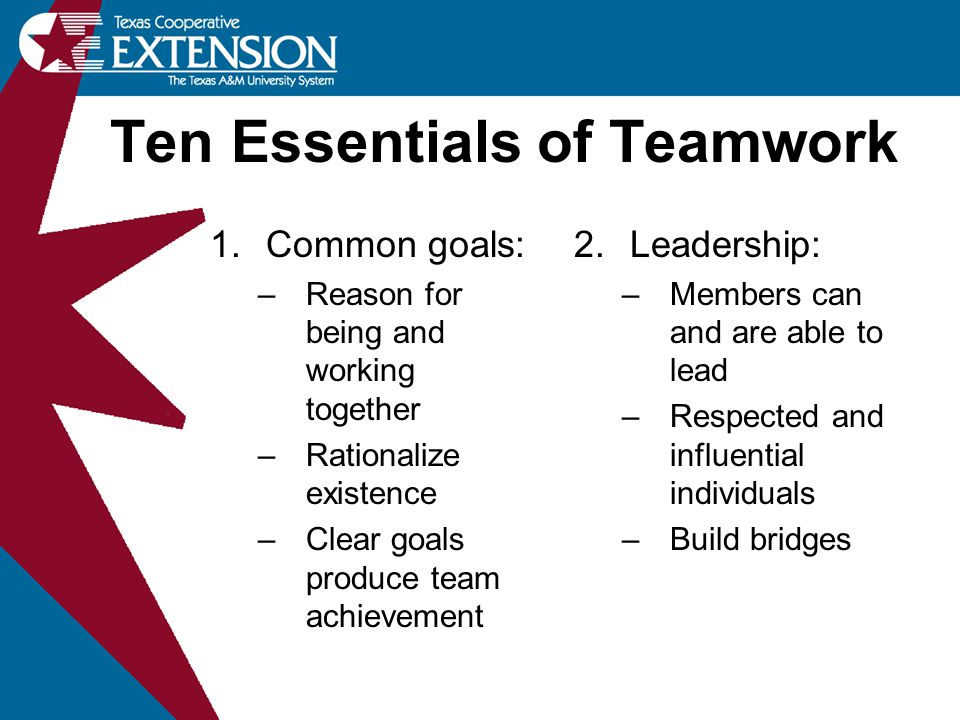 1.Common goals: –Reason for being and working together –Rationalize existence –Clear goals produce team achievement 2.Leadership: –Members can and are