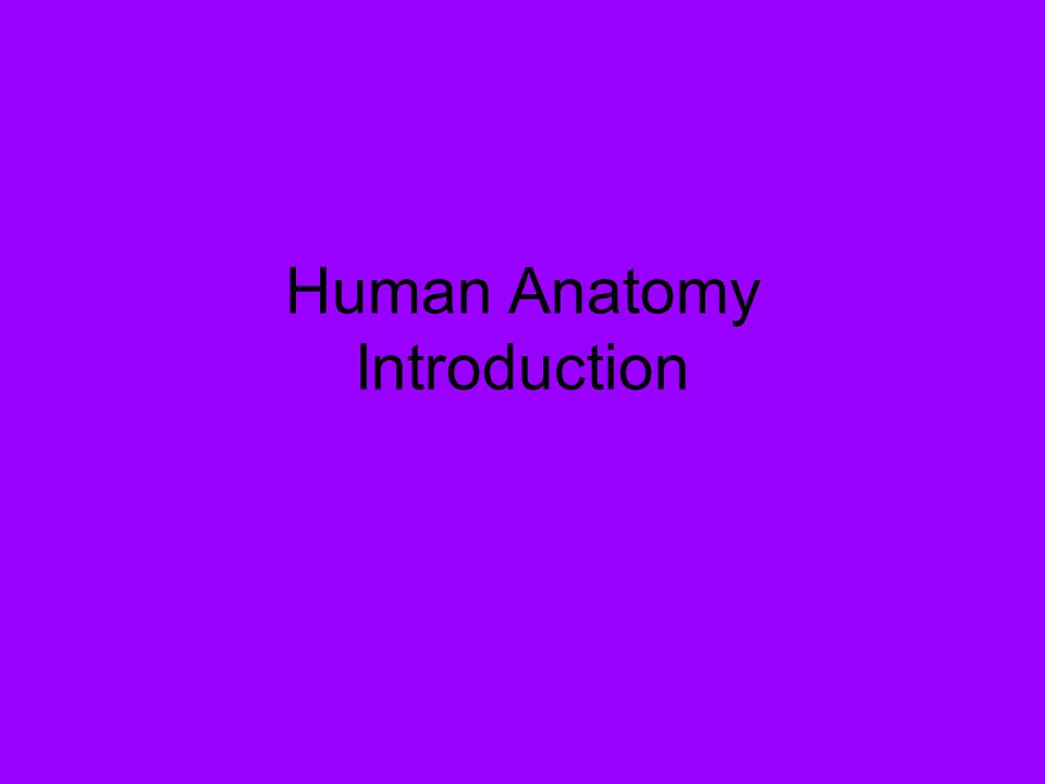 human anatomy introduction. what is anatomy? study of the, Human Body