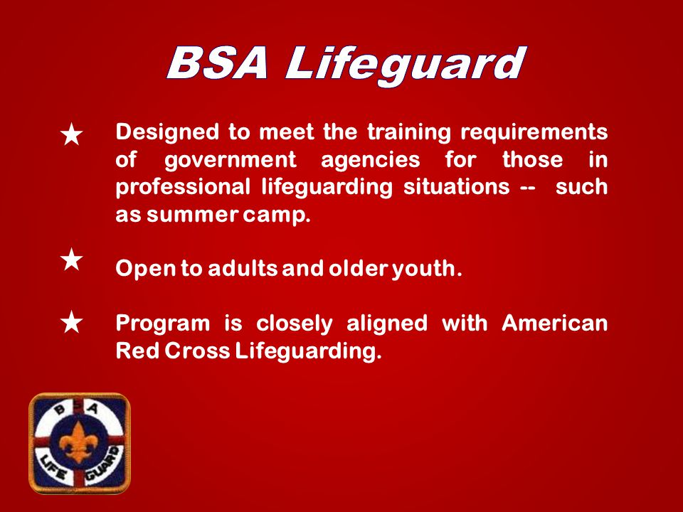 Designed to meet the training requirements of government agencies for those in professional lifeguarding situations -- such as summer camp.
