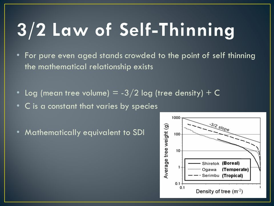 For pure even aged stands crowded to the point of self thinning the mathematical relationship exists Log (mean tree volume) = -3/2 log (tree density) + C C is a constant that varies by species Mathematically equivalent to SDI