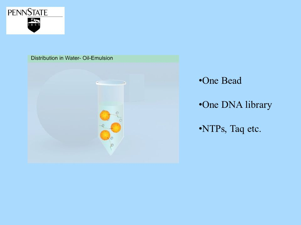 One Bead One DNA library NTPs, Taq etc.