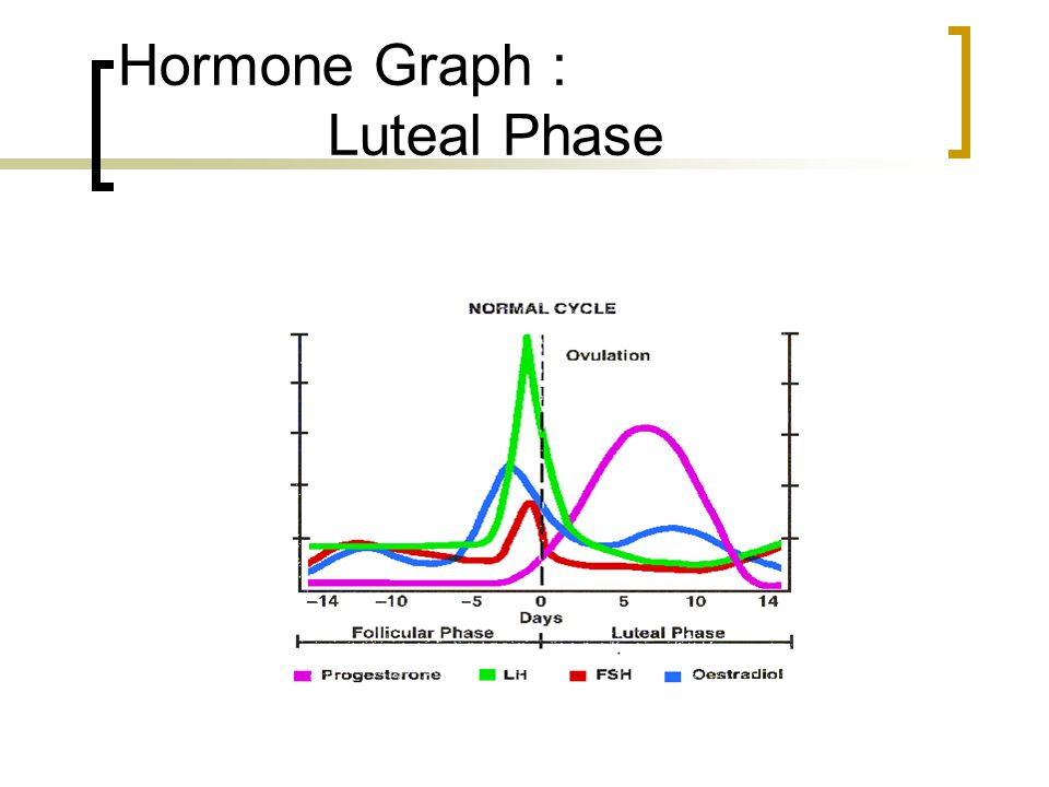 Hormone Graph : Luteal Phase