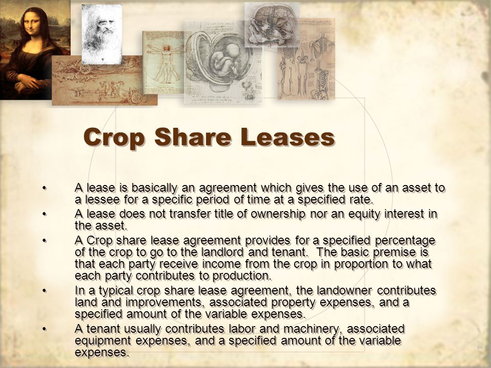 Crop Share Leases A lease is basically an agreement which gives the use of an asset to a lessee for a specific period of time at a specified rate.
