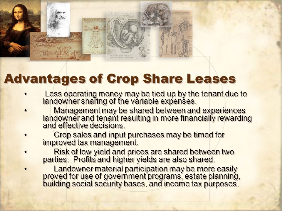 Advantages of Crop Share Leases Less operating money may be tied up by the tenant due to landowner sharing of the variable expenses.