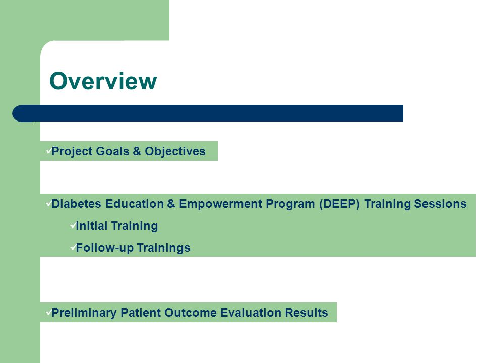 Overview Project Goals & Objectives Diabetes Education & Empowerment Program (DEEP) Training Sessions Initial Training Follow-up Trainings Preliminary Patient Outcome Evaluation Results