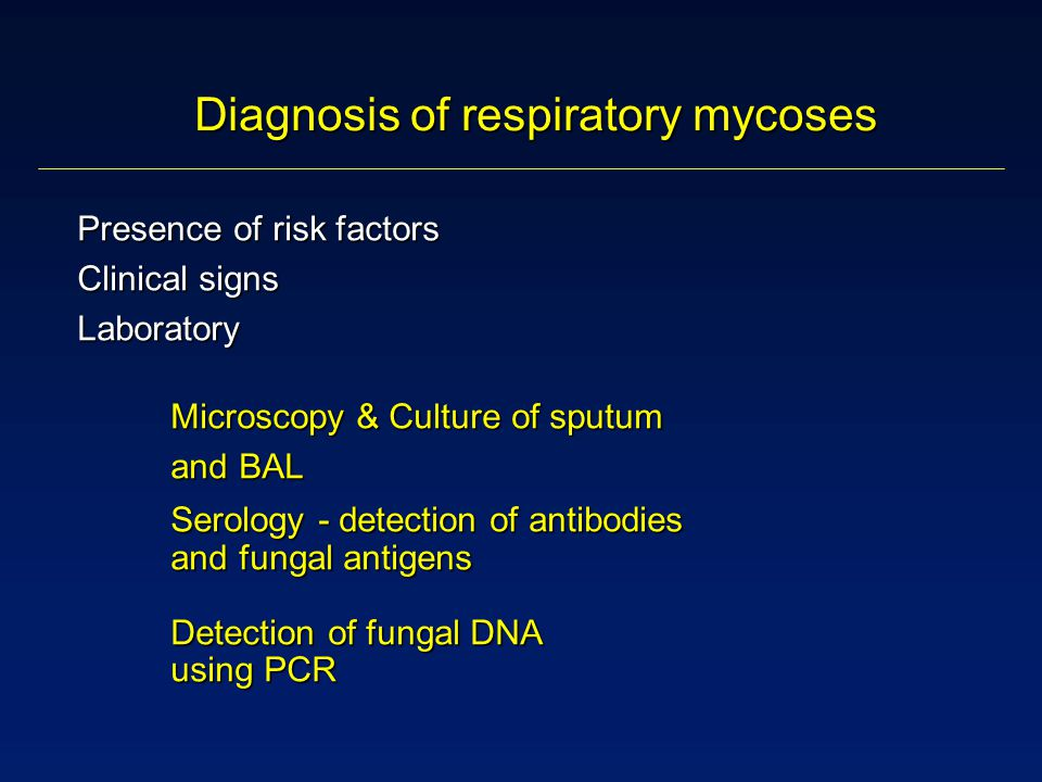 Presence of risk factors Clinical signs Laboratory Microscopy & Culture of sputum Microscopy & Culture of sputum and BAL Serology - detection of antibodies and fungal antigens Detection of fungal DNA using PCR and BAL Serology - detection of antibodies and fungal antigens Detection of fungal DNA using PCR Diagnosis of respiratory mycoses