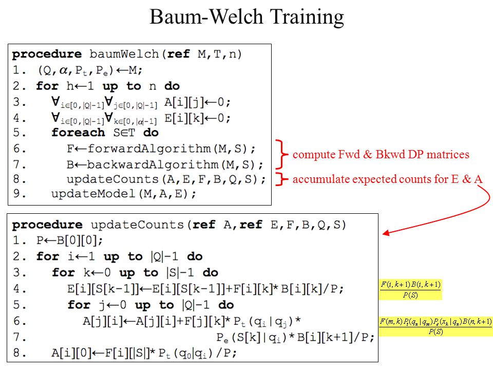 Baum-Welch Training compute Fwd & Bkwd DP matrices accumulate expected counts for E & A