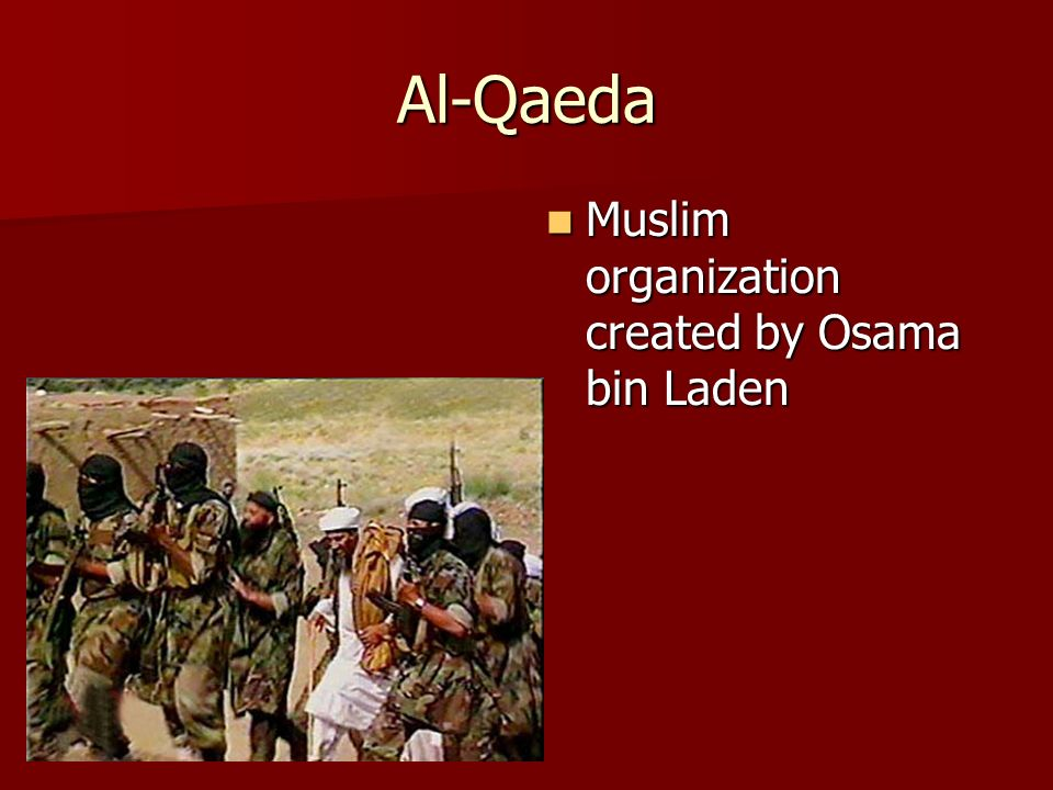 Al-Qaeda Muslim organization created by Osama bin Laden Muslim organization created by Osama bin Laden