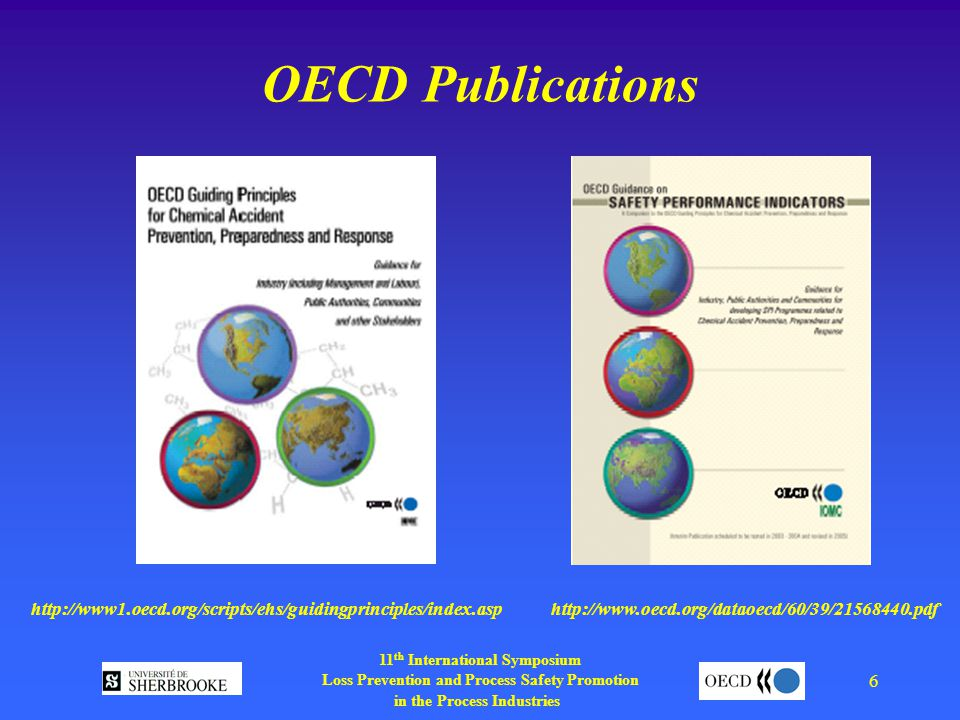 11 th International Symposium Loss Prevention and Process Safety Promotion in the Process Industries 6 OECD Publications
