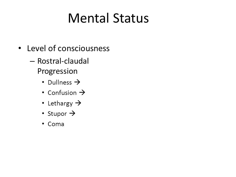 Mental Status Level of consciousness – Rostral-claudal Progression Dullness  Confusion  Lethargy  Stupor  Coma