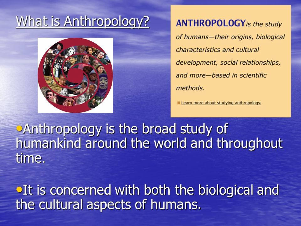What is Anthropology.
