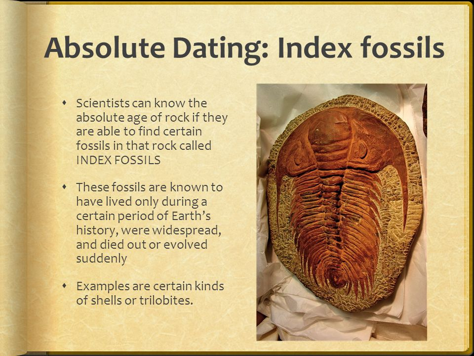 why are trilobites index fossils