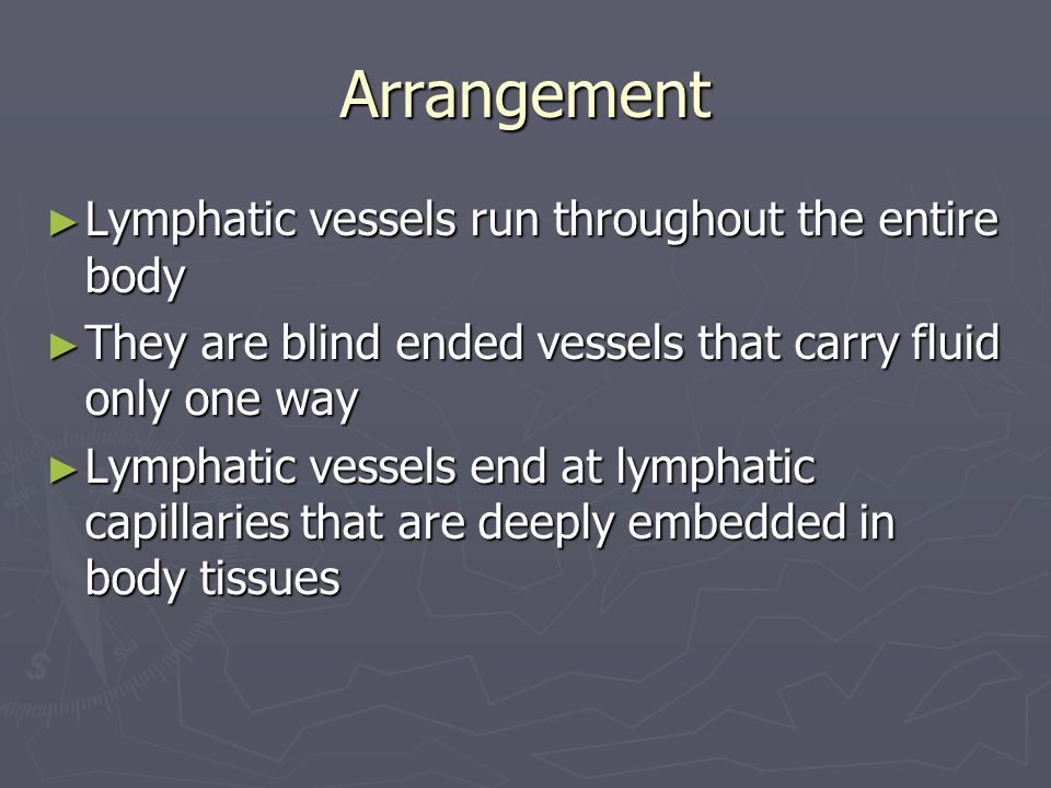 Arrangement ► Lymphatic vessels run throughout the entire body ► They are blind ended vessels that carry fluid only one way ► Lymphatic vessels end at lymphatic capillaries that are deeply embedded in body tissues