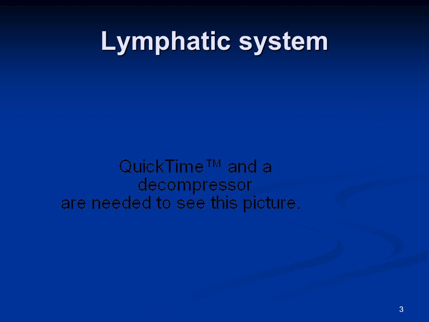 3 Lymphatic system