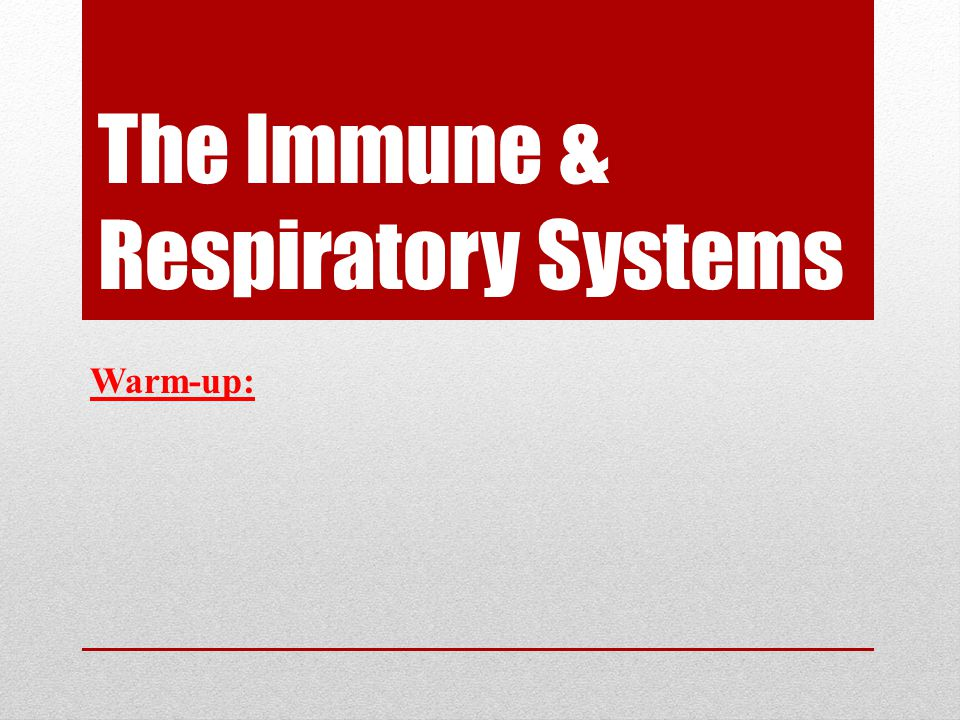 The Immune & Respiratory Systems Warm-up: