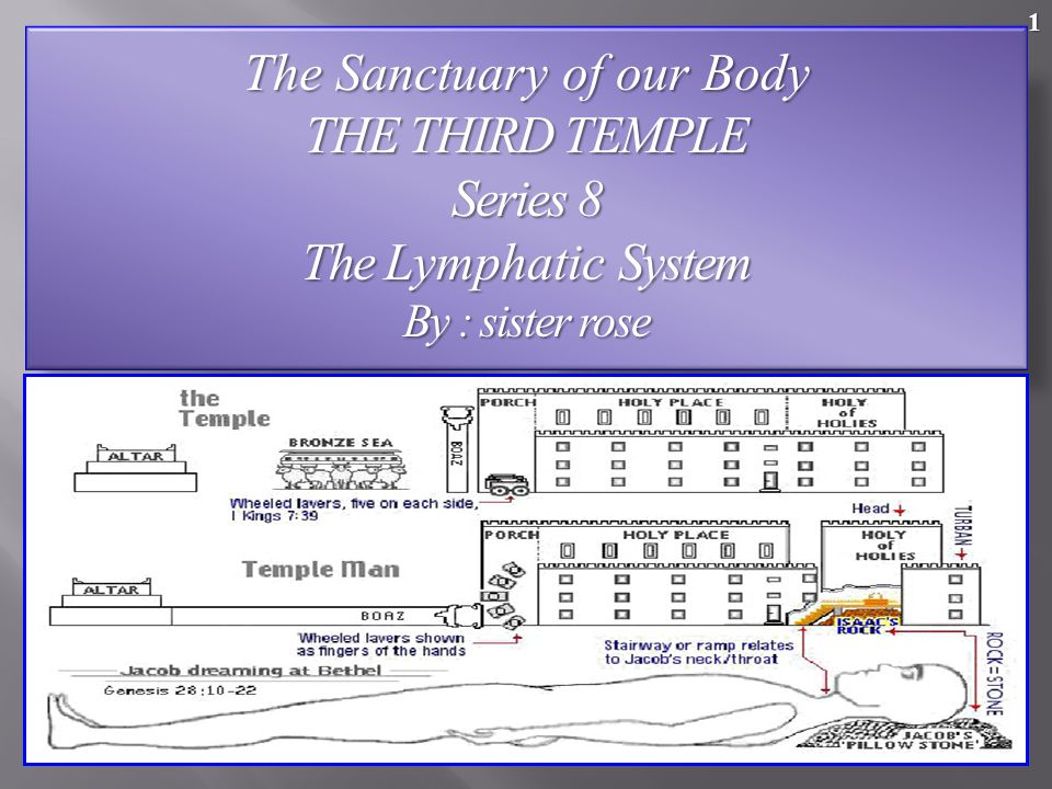 The Sanctuary of our Body THE THIRD TEMPLE Series 8 The Lymphatic System By : sister rose 1
