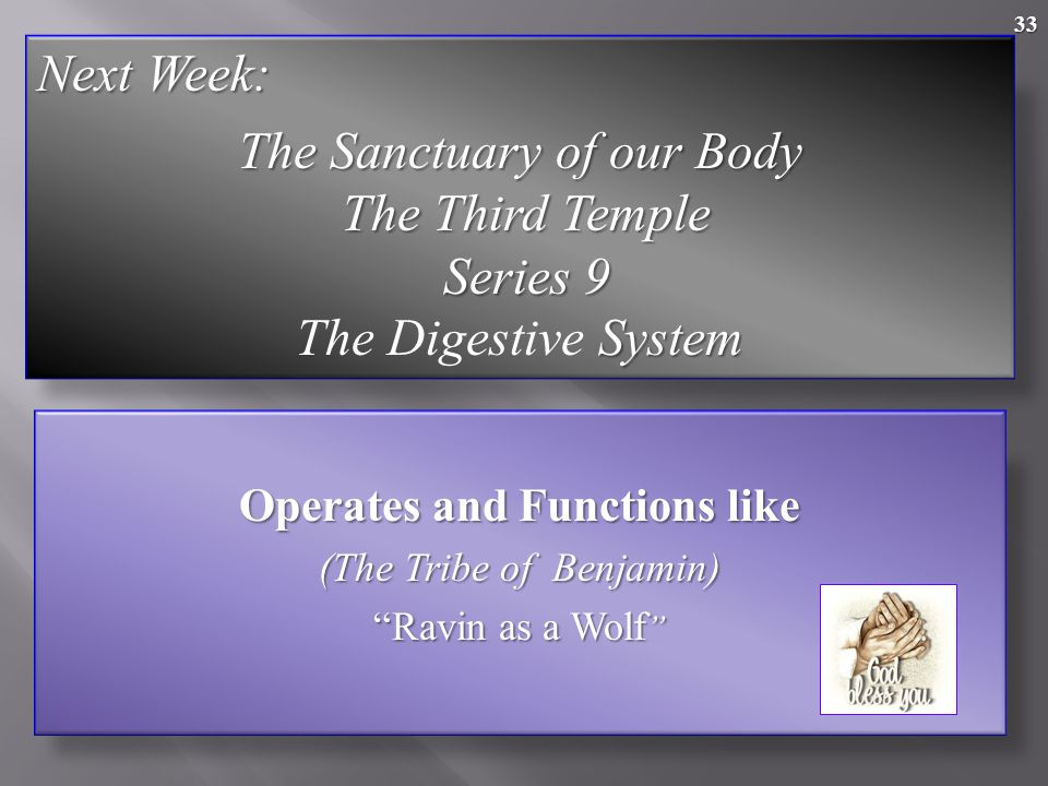 33 Operates and Functions like (The Tribe of Benjamin) Ravin as a Wolf Next Week: The Sanctuary of our Body The Third Temple The Third Temple Series 9 Series 9 System The Digestive System