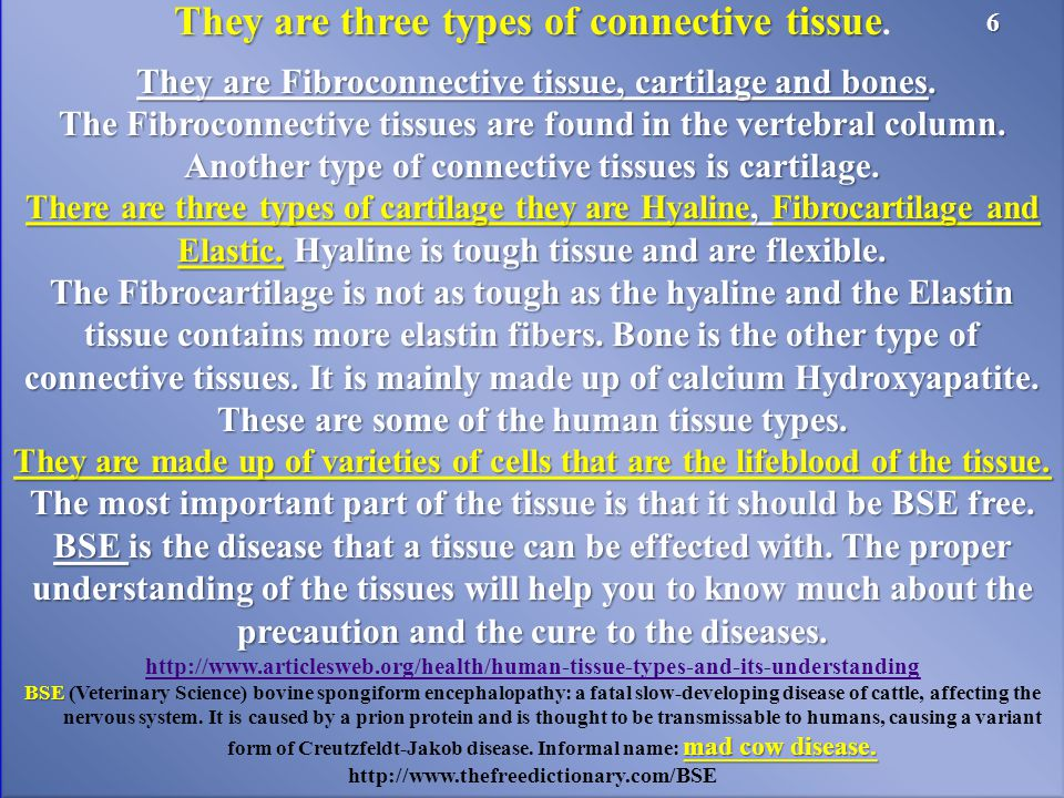 They are three types of connective tissue They are three types of connective tissue.