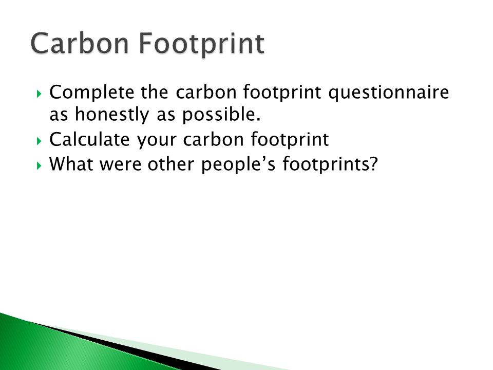  Complete the carbon footprint questionnaire as honestly as possible.
