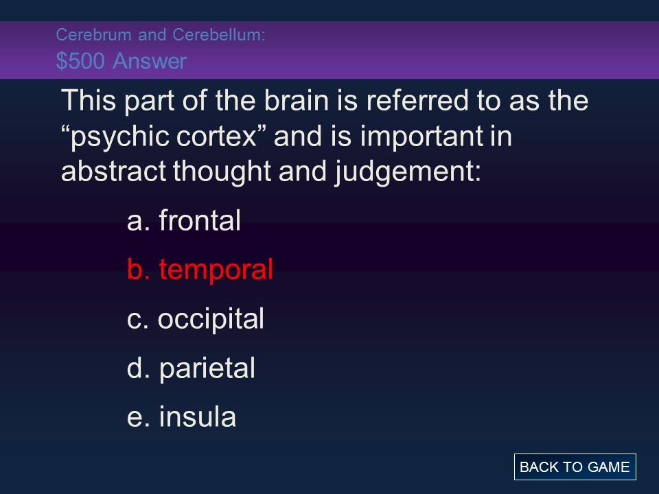 Cerebrum and Cerebellum: $500 Answer This part of the brain is referred to as the psychic cortex and is important in abstract thought and judgement: a.