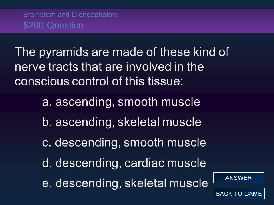 Brainstem and Diencephalon: $200 Question The pyramids are made of these kind of nerve tracts that are involved in the conscious control of this tissue: a.