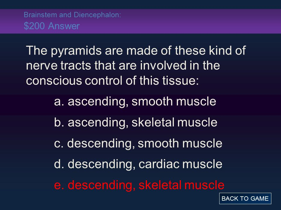 Brainstem and Diencephalon: $200 Answer The pyramids are made of these kind of nerve tracts that are involved in the conscious control of this tissue: a.