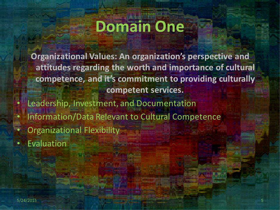 Domain One Organizational Values: An organization's perspective and attitudes regarding the worth and importance of cultural competence, and it's commitment to providing culturally competent services.
